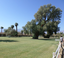 Furnace Creek